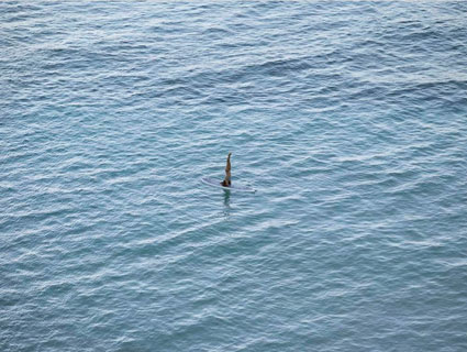 Photo by Richard Misrach . Source: thepacegallery.com